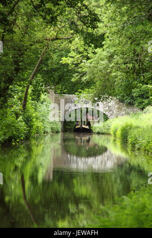 Narrowboat on the Monmouthshire and Brecon canal near Llangynidr, Brecon Beacons, Powys, Wales -  June - Stock Photo