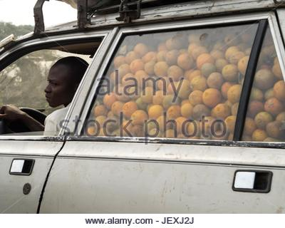 A man drives a car filled with oranges. - Stock Photo