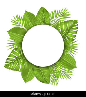 Illustration Clean Card with Text Space and Green Tropical Leaves - - Stock Photo