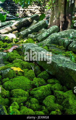 Ruined city Nan Madol,  Pohnpei, Micronesia, Central Pacific - Stock Photo