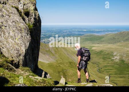 Senior climber scrambling on Llech Ddu spur or Crib Lem on Carnedd Dafydd in Carneddau mountains of Snowdonia National - Stock Photo