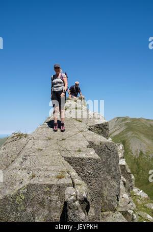 Hikers scrambling on Llech Ddu spur or Crib Lem on Carnedd Dafydd in Carneddau mountains of Snowdonia National Park. - Stock Photo