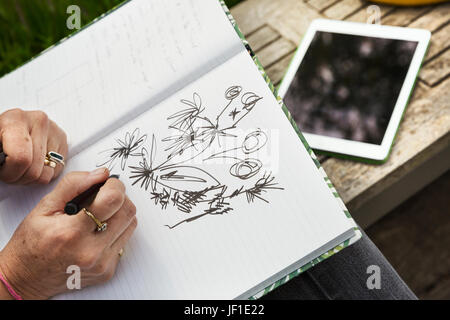 High angle view of a woman sitting on a bench, drawing flowers in a sketchbook, a digital tablet. - Stock Photo