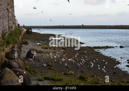 Family and Seagulls at the Margins of River Corrib in Galway, Ireland - Stock Photo
