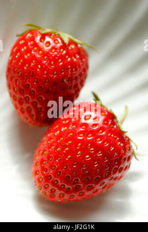 Two juicy freshly picked English strawberries - Stock Photo