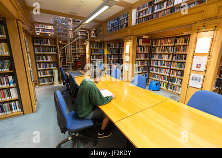 Cambridge University student studying in the library, Queens College, Cambridge University, Cambridge England UK - Stock Photo
