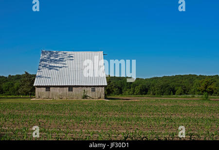 A barn with a steeply sloped white roof on a working farm - Stock Photo