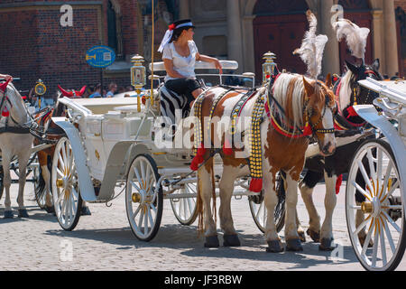 Horse carriage in market square. - Stock Photo