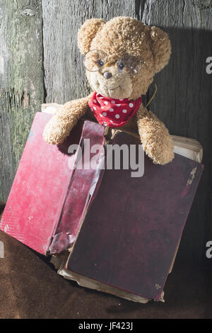 Children teddy bear with book - Stock Photo