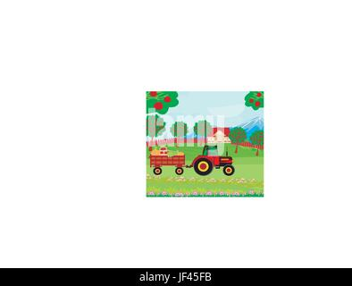 landscape with apple trees and man driving a tractor with a trailer full of vegetables - Stock Photo