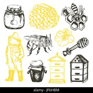 Bee Garden - illustration of color vector hand drawn vintage composition. Realistic honey pot, jug, spoon, bee, flower, honeycomb, apiary, beekeeper,