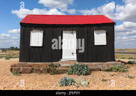 The Red Shed, Rye Harbour nature reserve, east sussex, uk - Stock Photo