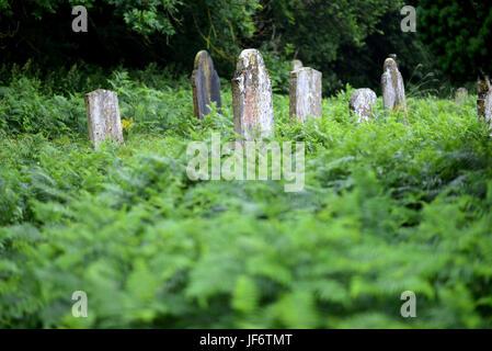 Graves in an overgrown graveyard, UK - Stock Photo