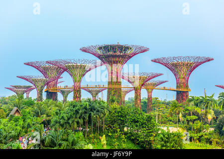 SINGAPORE - SEPTEMBER 5, 2015: Supertrees at Gardens by the Bay. - Stock Photo
