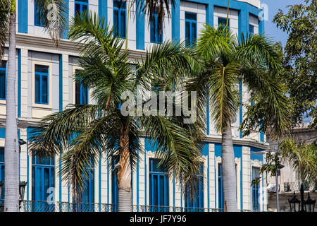 Palm trees and classic architecture - HAVANA, CUBA - Stock Photo