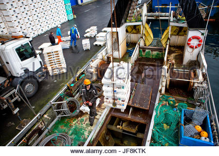 Workers unload a fishing trawler that has come into port at the Torshavn harbor. - Stock Photo