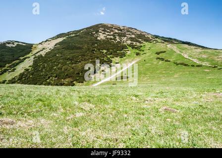 highest hill of Mala Fatra mountains in Slovakia - Velky Krivan hil from Snilovske sedlo pass above Vratna dolina - Stock Photo