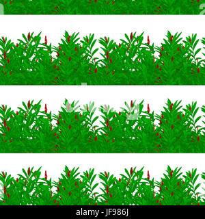 Tropical Stripes Seamless Pattern - Stock Photo