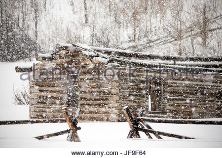 A rustic cabin at the edge of a forest in a snowy landscape. - Stock Photo