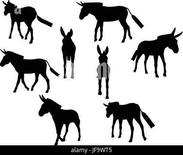 donkey silhouette - Stock Photo