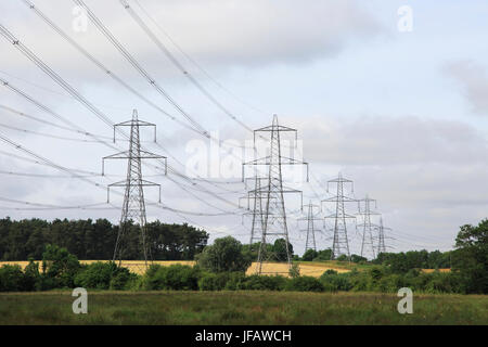 Pylons carrying high voltage electrical cables from Sizewell nuclear power station over countryside, Wickham Market, - Stock Photo