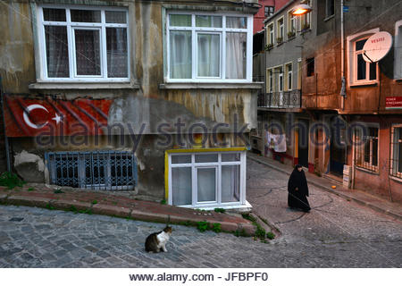 A cat watches a woman walk down a street in Istanbul at dusk. - Stock Photo