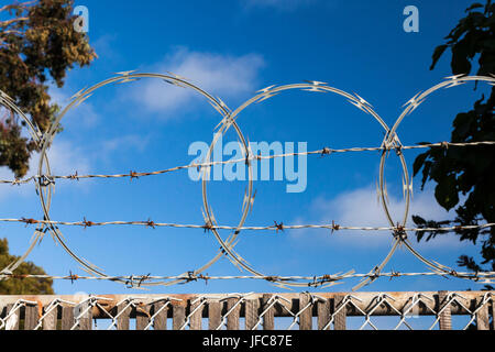 Barbed wire and razor wire at the top of a fence with blue sky behind and foliage on either side. - Stock Photo