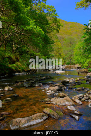 River Lyn Lynmouth Devon walk to Watersmeet in summer - Stock Photo