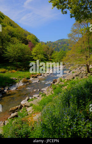 Lynmouth Devon walk to Watersmeet along the river Lyn in summer - Stock Photo