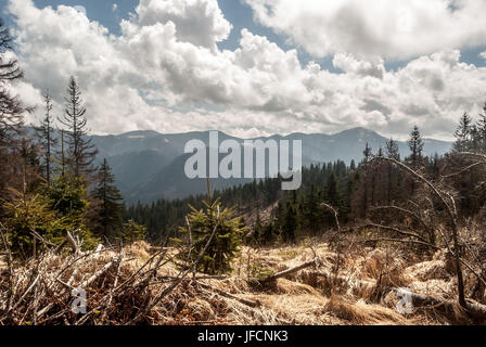 panorama of main ridge of Velka Fatra mountains in Slovakia from Jarabina hill during spring day with blue sky and - Stock Photo