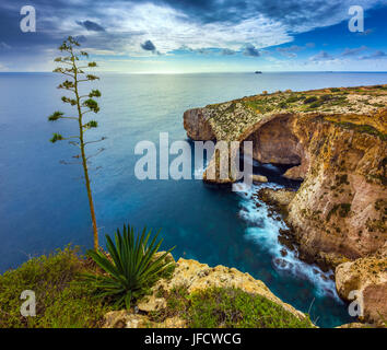 Malta - The beautiful arch of the Blue Grotto with tree - Stock Photo
