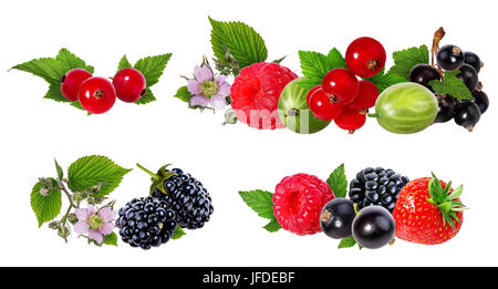 Berries collection. Raspberry, blueberry,strawberry, currant, gooseberry isolated on white. - Stock Photo