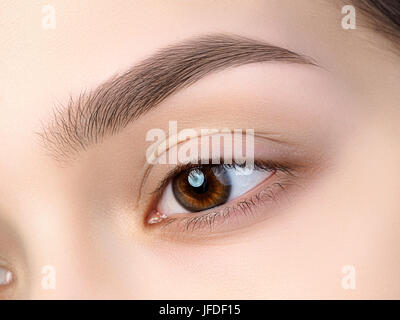Close up view of beautiful brown female eye. Perfect trendy eyebrow. Good vision, contact lenses, brow bar or fashion - Stock Photo