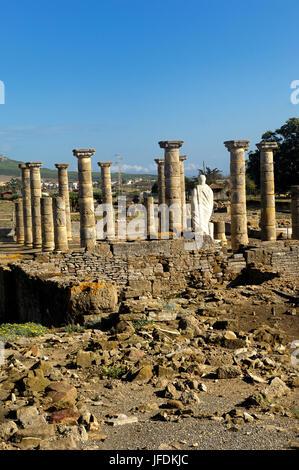 Ruins of Baleo Claudia, Roman town, Bolonia, Cadiz, Spain - Stock Photo