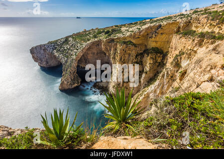 Malta - The beautiful cliff of the Blue Grotto with plants in front - Stock Photo