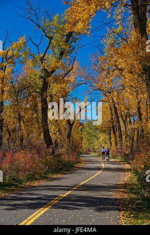 Bike riders on paved path in fall trees - Stock Photo