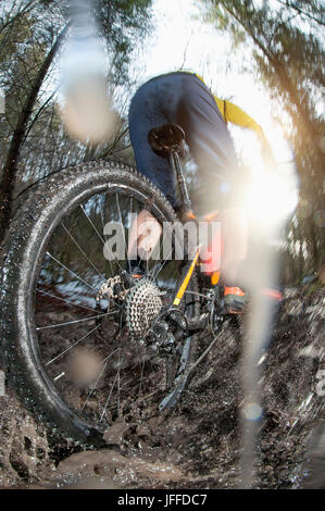 Close-up of biker riding bike through puddle in forest