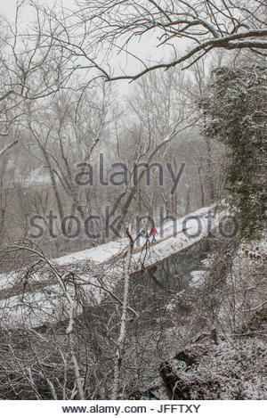 A man and his dog walking along the towpath of the Chesapeake and Ohio Canal on a snowy day. - Stock Photo