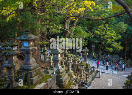 Japan, Kansai, Nara City, Kasuga Shrine, UNESCO World Heritage, - Stock Photo