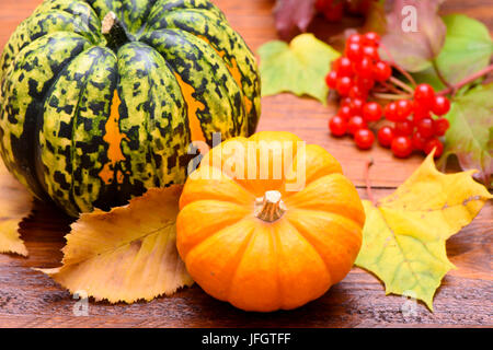 Autumn, pumpkins, leaves and berries as a decoration on wooden - Stock Photo