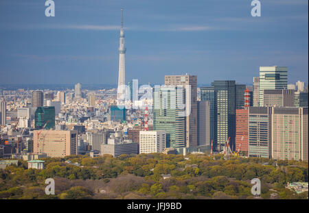 Japan, Tokyo City, Imperial Palace East Gardens, Otemachi Skyline, and Skytree Tower - Stock Photo