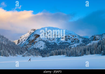 Monte Piana, Auronzo, Misurina, Cadore, Dolomiti, Veneto, Italy, Man doing Nordic ski - Stock Photo