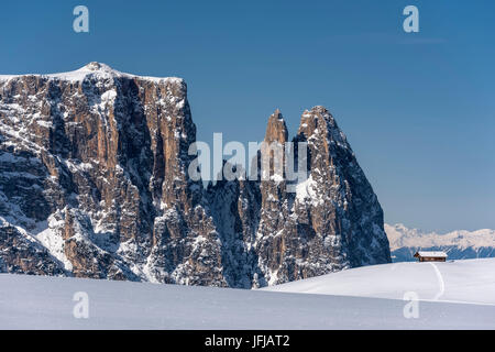 Alpe di Siusi/Seiser Alm, Dolomites, South Tyrol, Italy, Winter landscape on the Alpe di Siusi/Seiser Alm with the - Stock Photo