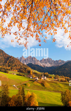 Val di Funes with the village of Santa Maddalena, In the background the Odle, in this picture naturally framed by - Stock Photo