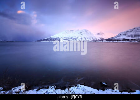 The sky turns pink at sunset and is reflected in the frozen sea Storfjorden Lapland Lyngen Alps Tromsø Norway Europe