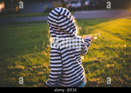 A toddler holds a dandelion in the sunlight with the toddler standing with back to camera. - Stock Photo