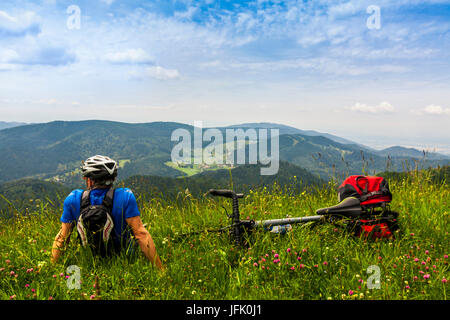 Rear view of man relaxing on grass and looking at mountains - Stock Photo