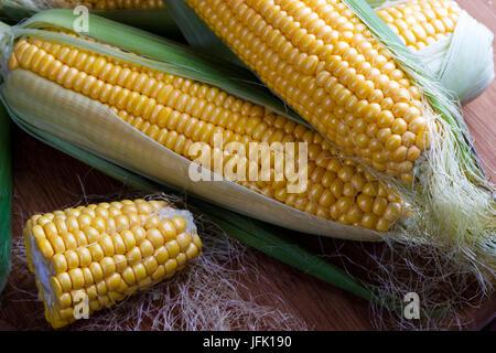 Fresh corn on cobs - Stock Photo