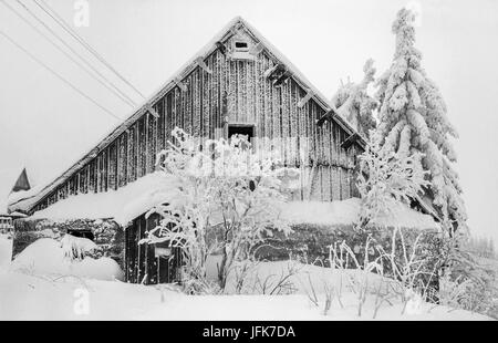 Coldly and frosty. . . - Stock Photo