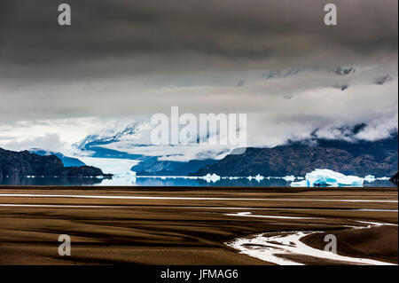 Torres del Paine National Park, Patagonia, Chile, South America, Bank of the Lake Grey with Grey Glacier in the - Stock Photo
